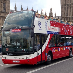 Sightseeing Buses