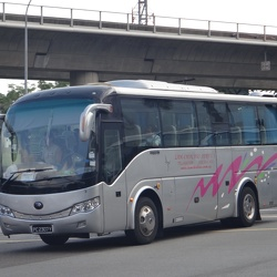 Lam Ho & Lam Chin Bus Services