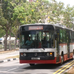 SBS Transit, Singapore (before GCM/BCM)